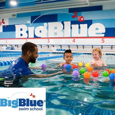 Big Blue Swim School Franchise Opportunity