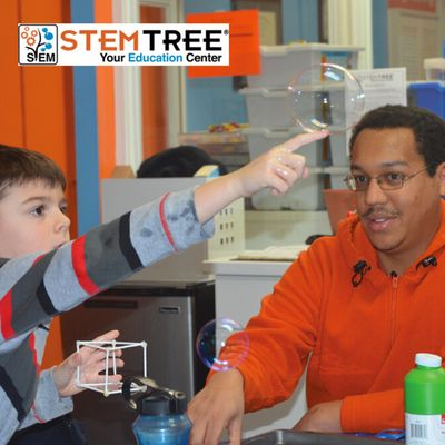 Stemtree Education Franchise Opportunity