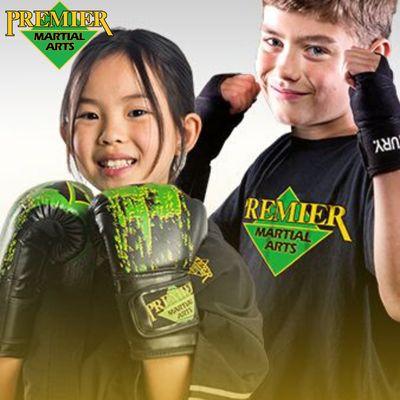 Premier Martial Arts Franchise Opportunity