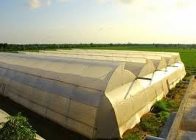 FARM LAND WITH GREENHOUSES FOR SALE IN COBOURG