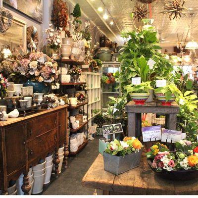 Profitable and Established Florist in S. Florida for Sale