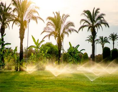 Irrigation Business For Sale in Sarasota