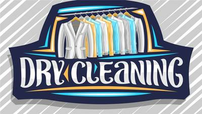 Dry Cleaner with Plant For Sale in Sarasota County