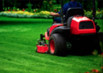 Well Established Landscape Maintenance and Snow Removal Contractor