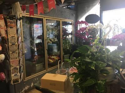 Flower Shop For Sale in Yonge/Sheppard