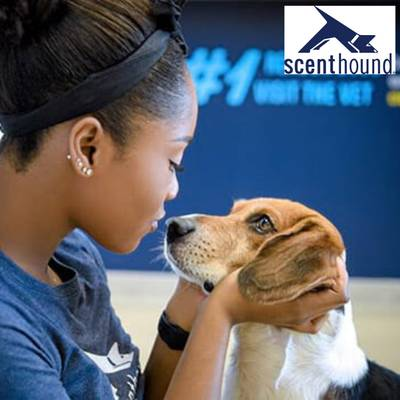 Scenthound Dog Grooming Franchise Opportunity