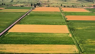 Farmland for Sale in Niagara & Orangeville
