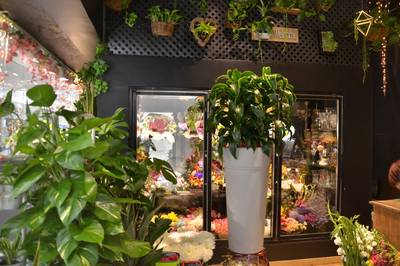 FLOWER SHOP FOR SALE IN MALL OF SCARBOROUGH