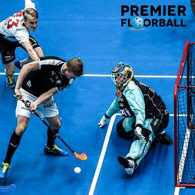 Premier Floorball Youth Sports Franchise Opportunity