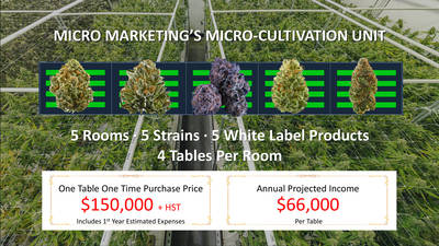 Turnkey Micro-Grow Cannabis Business Opportunity
