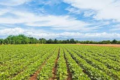 Farmland With 3 Houses for Sale