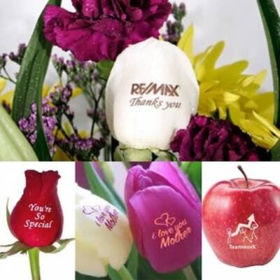 Personalized Floral Gift Shop Business for Sale in Edmonton, Alberta