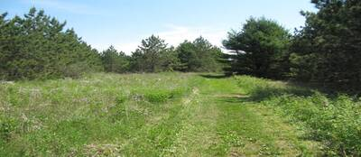 100 ACRE VACANT LAND FOR SALE