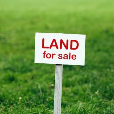 2 Acres Of Prime Development Land for Sale in Peel Region