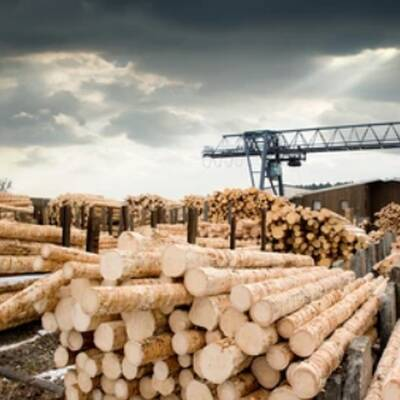 Lumber Mill Remanufacturing Business for Sale in BC